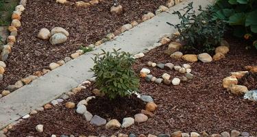 Как правильно мульчировать глинистые грунты